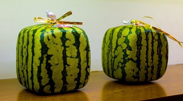Japan's hidden treasures – more than square watermelons